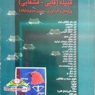 پیوستگی قومی و تاریخی آغوز _ایل های قشقایی ایران قبیله (قایی_قشقایی)